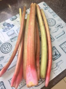 Cleaned stalks of rhubarb.